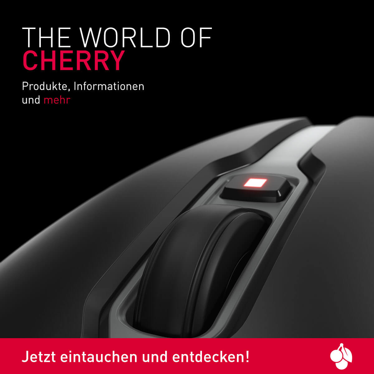 Erleben Sie den World of CHERRY Blog.